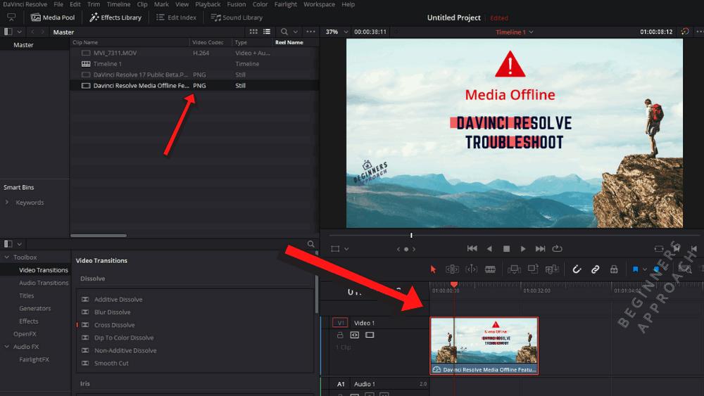 DaVinci Resolve Stills Editing
